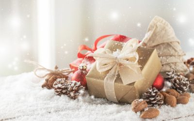 ¿Qué regalar esta navidad con Minigüini?